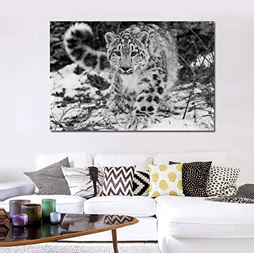 Amazon Com Brandless Xue Hua Piao Piao Snow Leopard Wild Animal Wallpaper Living Room Decoration Home Wall Art Decor Posters 50x75cm No Frame Home Kitchen