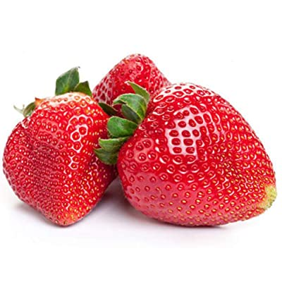 JingYu 100Pcs Red Strawberry Seeds, Delicious and Juicy Fruit Seeds Plant for Outdoor Garden Farm Red Strawberry Seeds : Garden & Outdoor