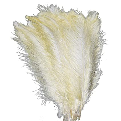 30-35cm for Home Wedding Party Decoration AABABUY 10pcs Dark Pink Ostrich Feathers 12-14inch
