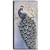 YaSheng Art -100% Hand-Painted Oil Painting on Canvas Beautiful Colorful Peacock Carving Paintings Modern Home Sitting Room Decor Canvas Wall Art 3D Painting Ready to Hang 24x48 inch
