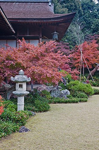 Rob Okochi Sanso Kyoto Japan - Okochi Sanso Villa, Sagano, Arashiyama, Kyoto, Japan by Rob Tilley/Danita Delimont Art Print, 13 x 20 inches