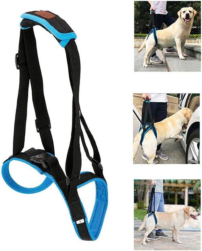 Doglemi - Arnés de elevación portátil para perros con patas ...