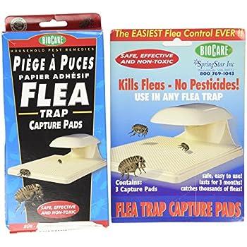 Flea Trap w/ 3 Capture Pads