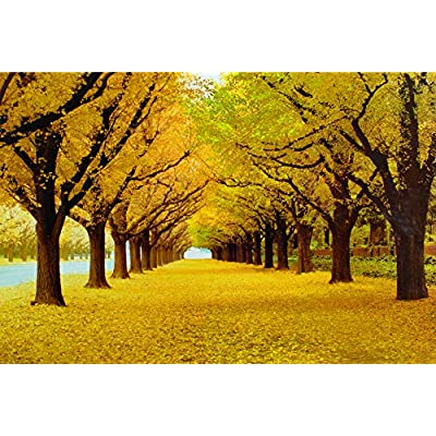 HFICUS Jigsaw Puzzles 1000 Pieces for Adults Defoliation Pattern Wooden Jigsaw Puzzle Intellectual Game Learning Education Decompression Toys for Kids 75 X 50 cm: Toys & Games