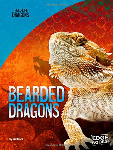 Bearded Dragons (Real-Life Dragons)