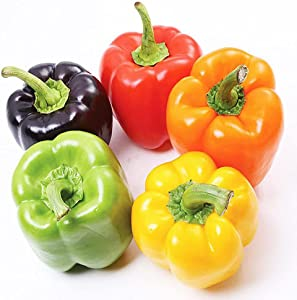 Ckyuna 250+ Rainbow Bell Peppers Mix Sweet Pepper Seeds Non-GMO Heirloom Survival Garden Seeds for Planting