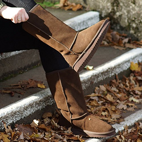Women's Shoes Espresso Dolomity Slouch Boot Dude Brown Suede n5UfqxfZI