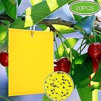 ZOORE 20 Piezas de atrapamoscas para Plantas, Eco