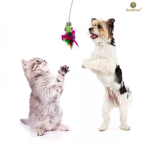 SunGrow - Juguete para gatos con forma de varita y cerebro - Ejercicio mental y temporizador de cerebro ...