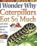 Caterpillars Eat So Much, Belinda Weber, 0753462346