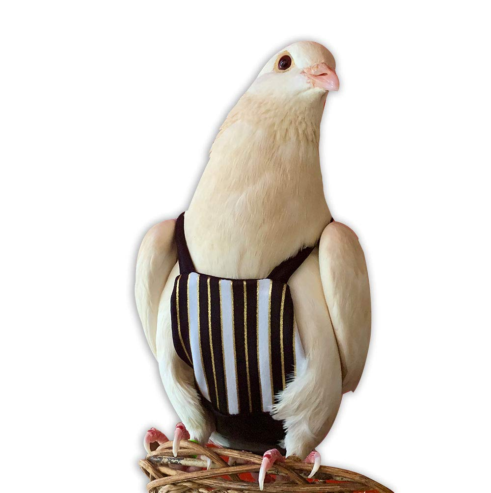 Bev's Bird Boutique - Regal Stripe Flyper (8.5) by Bev's Bird Boutique