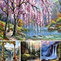 Fairylove 40 x 50 Paint by Numbers DIY Oil Painting -- Nature