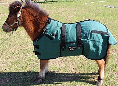 s Duck Turnout Water Resistant Foal Winter Blanket 51701 ()