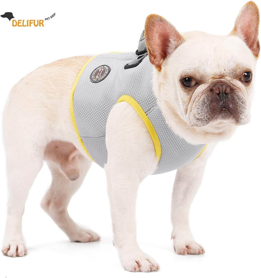 Delifur Dog Cooling Vest Harness with Adjustable Hook&Loop for Small Medium Large Dogs