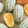 Park Seed Delicata Organic Winter Squash Seeds