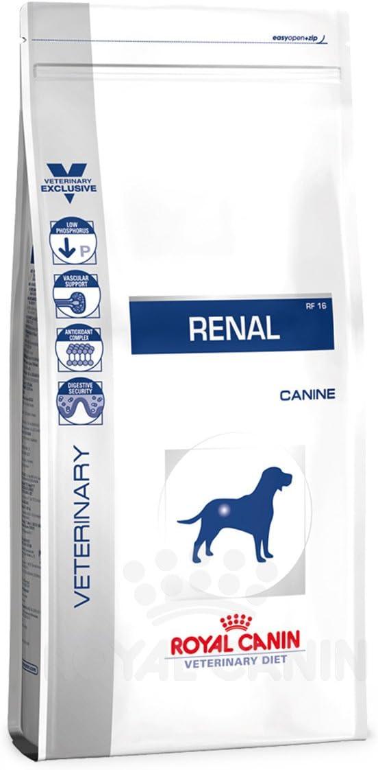 ROYAL CANIN Alimento para Perros Renal RF16-2 kg