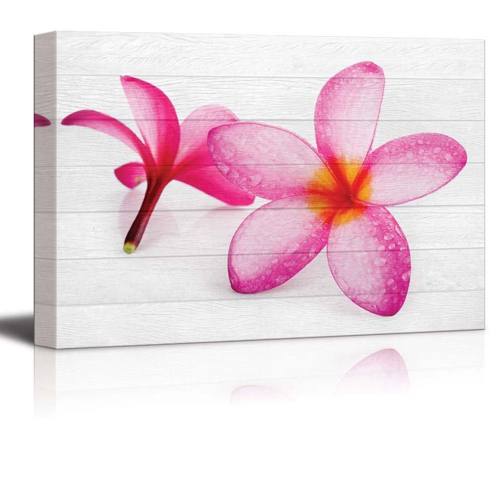 Pink Hawaiian Plumeria Flowers On White Wood Panels Canvas Art