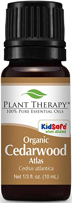 Plant Therapy Cedarwood Oil