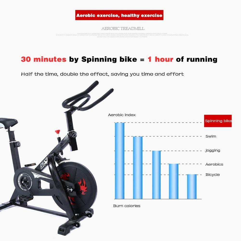 LMZZGAOYANQING Equipo de Ejercicio Bicicleta de Spinning Máquina ...