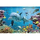 Empireposter - Delfine - Tropische Wasserwelt - Größe (cm), ca. 91,5x61 - Poster