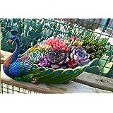 Worila Handmade Peacock Succulent Plant Pot Vintage Cactus Plant Pot/Flower Pot/Container/Planter