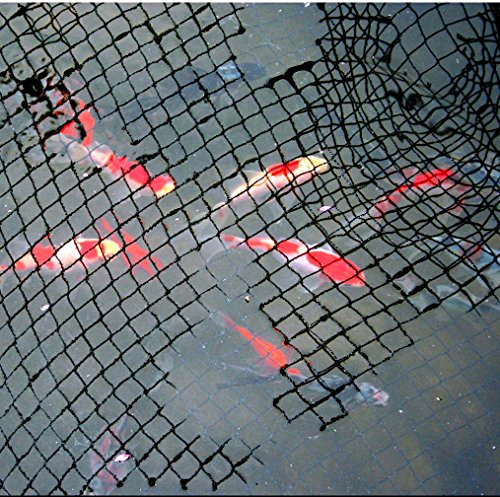 15-x-20-ft-pond-net-cover-easy-setup-pool-and-fishpond-nylon-netting-protects-fish-ponds-and-koi-fro