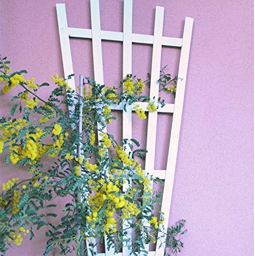 Celosía MADERA COMPOSITE Blanca 50x125 cm. Modelo Rangiroa: Amazon.es: Jardín