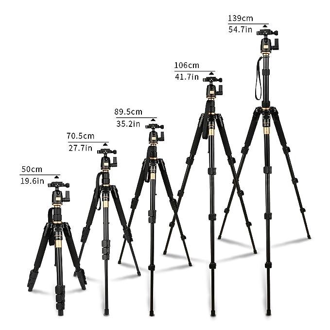 ... de magnesio cámara de aleación de aluminio trípode Monopod y 360 rotula para cámara SLR Canon, Nikon, Sony Pentax trípode AF001: Amazon.es: Electrónica