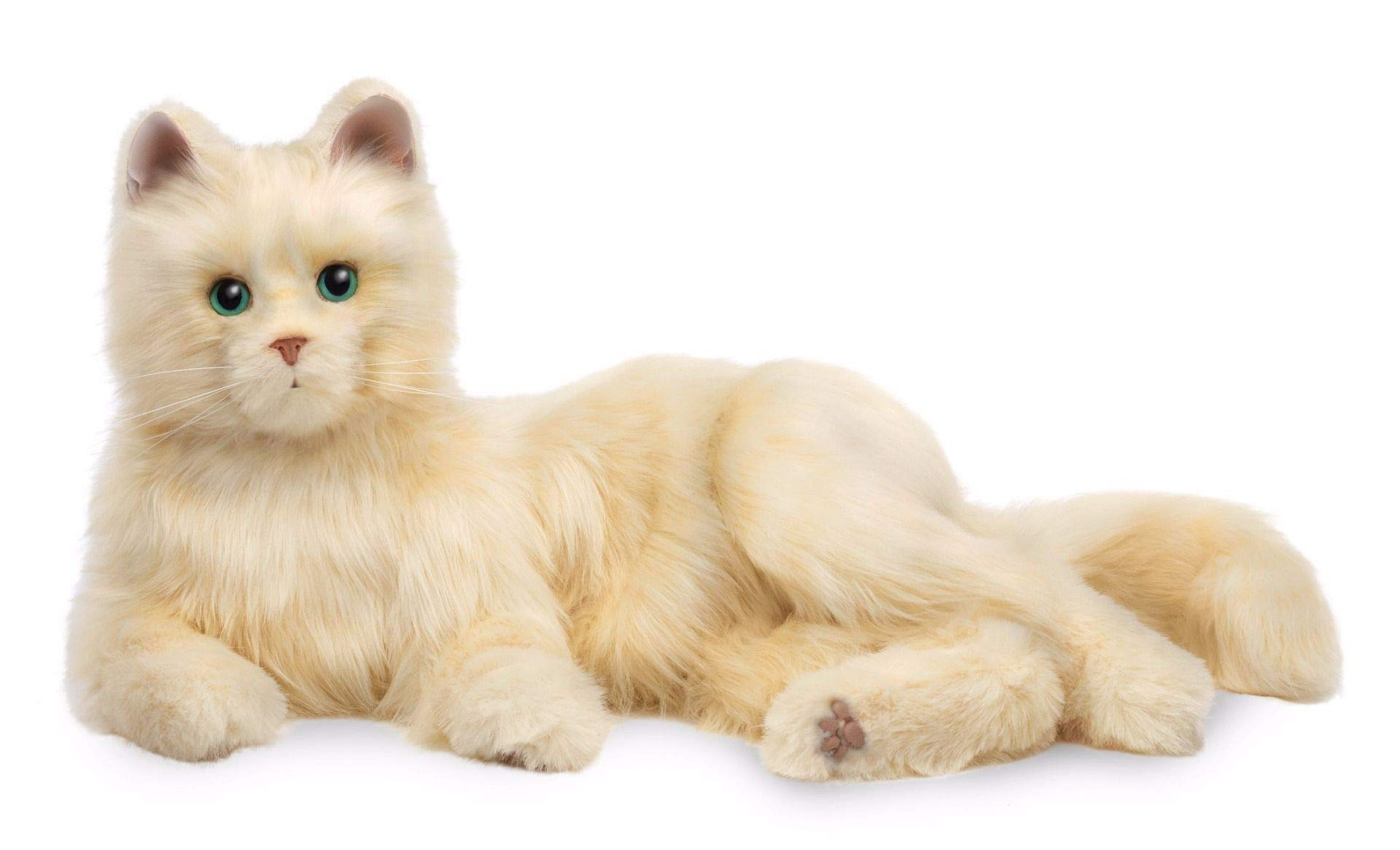 Ageless Innovation | Joy For All Companion Pets | Creamy White Cat | Lifelike & Realistic by JOY FOR ALL