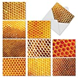 M2060 Honey I'M Home: 10 Assorted Thank You Note Cards With Images of Honey-filled Honeycombs, w/White Envelopes.