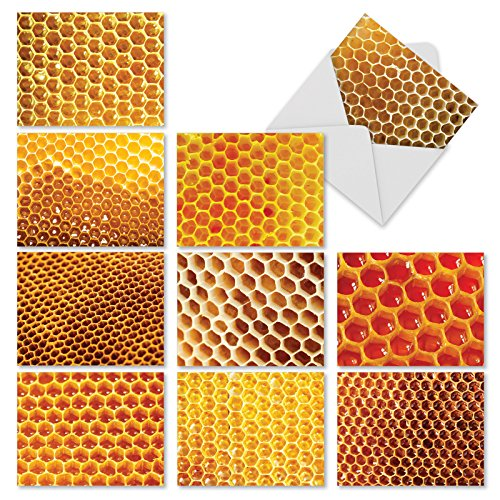 (10 'Honey I'm Home' Note Cards Featuring Honeycombs with Envelopes (4 x 5.12 Inch), Blank Greeting Cards for All Occasion, Stationery for Weddings, Baby Showers, Birthdays, Holidays, Thank You M3060)