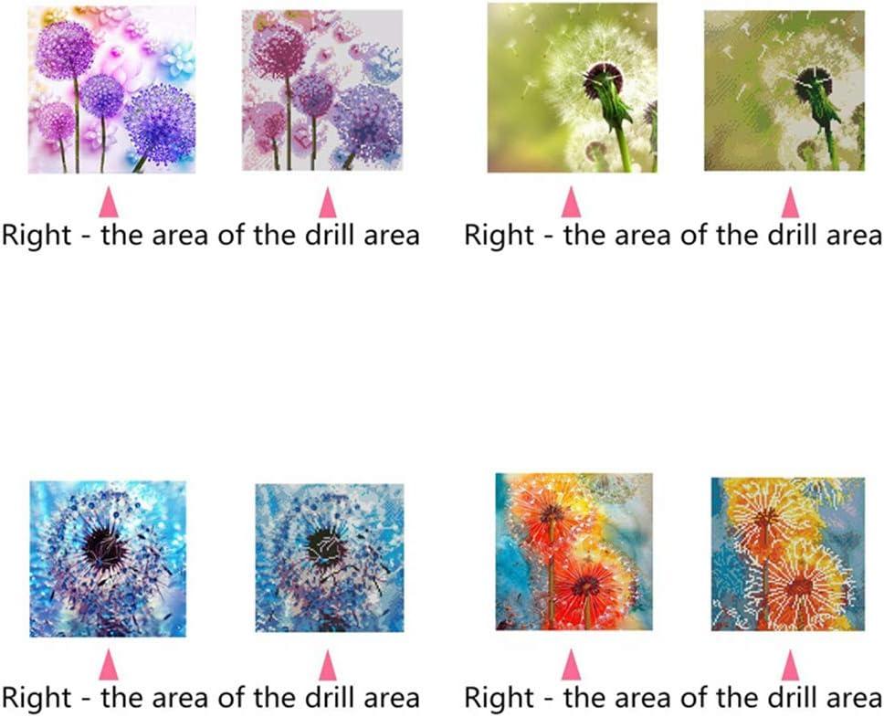 Stickerei Strasssteine Bilder Kunst Basteln f/ür Erwachsene oder Kinder Pusteblume Kristall Viesky 5D Diamantgem/älde voller Bohrer 30,5 x 30,5 cm