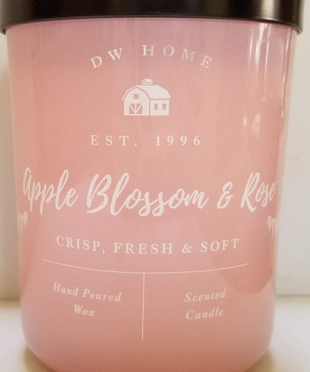 DW Home Apple Blossom /& Rose Large 2 Wick Candle