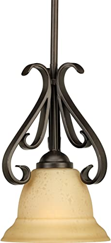 Progress Lighting P5153-77 1-Light Stem-Hung Mini-Pendant