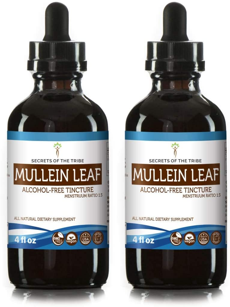 Mullein Leaf Alcohol-Free Liquid Extract, Organic Mullein Verbascum Densiflorum Dried Leaf Tincture Supplement 2×4 FL OZ