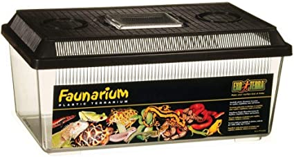 Exo Terra Faunarium Plastic Terrarium 36x21x16cm Amazon Co Uk Pet Supplies