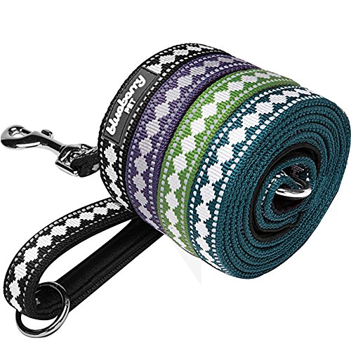 """Blueberry Pet Leashes For Dog 1"""" by 4-Feet Long Jacquard Dog Leash in Black with Neoprene Padded Handle, Large"""