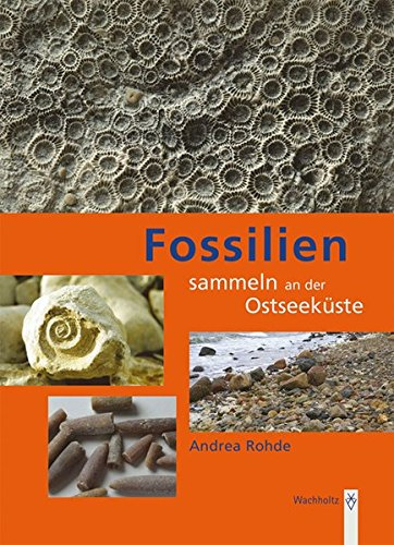 Fossilien sammeln an der Ostseeküste: Trilobiten, Seeigel, Donnerkeile und Co. - Fossilführende Gesteine des südwestlichen Ostseeraumes