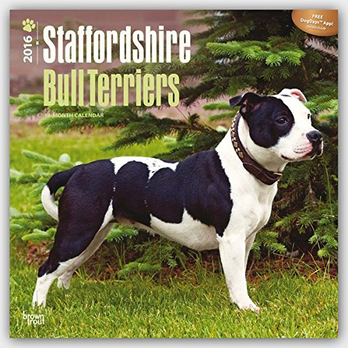 Download Staffordshire Bull Terriers 2016 Square 12x12 (Multilingual Edition) ebook