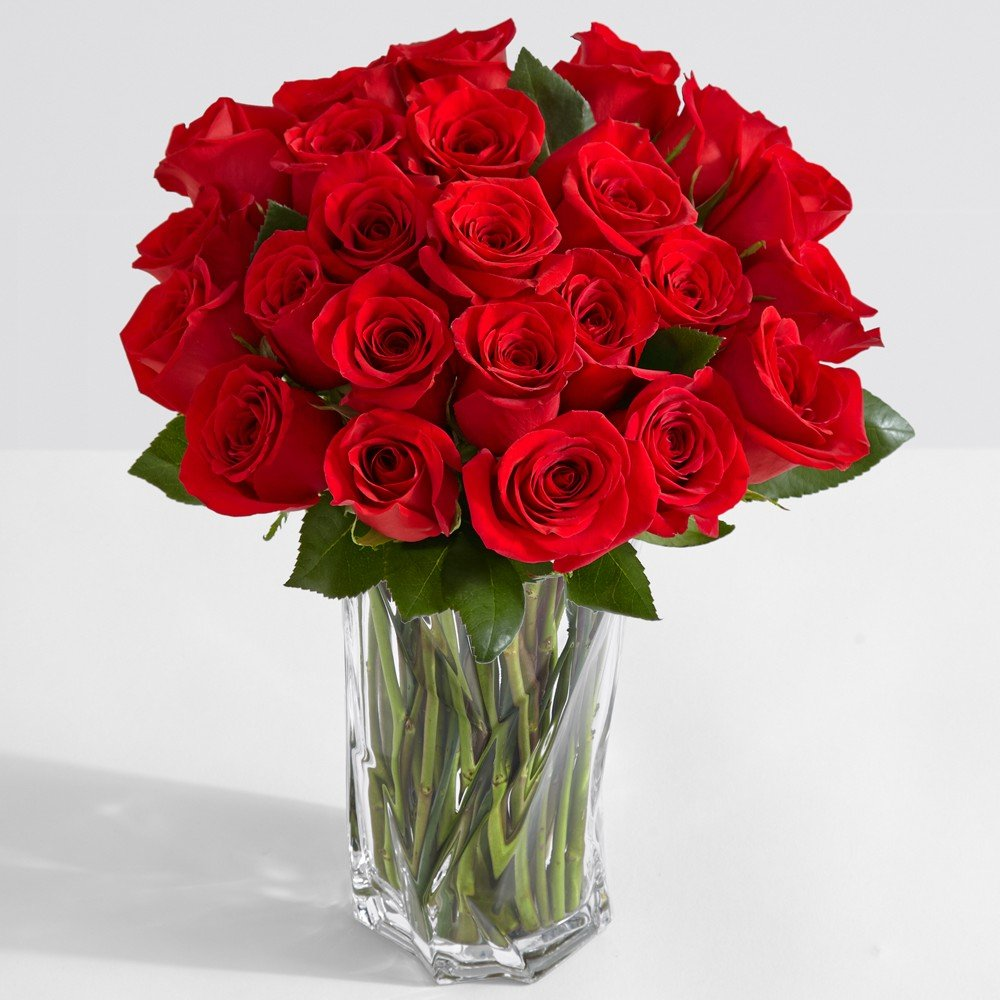 Amazon.com : ProFlowers - 24 Count Red Two Dozen Red Roses w/Free ...