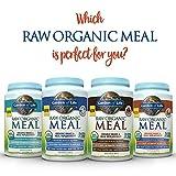 Garden-of-Life-Meal-Replacement-Organic-Raw-Plant-Based-Protein-Powder-Vanilla-Chai-Vegan-Gluten-Free-16-oz-454g-Powder