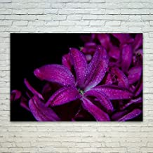 Westlake Art - Poster Print Wall Art - Flower Purple - Modern Picture Photography Home Decor Office Birthday Gift - Unframed - 18x12in (*d9-4c0-033)