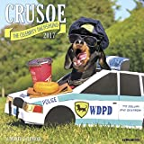 2018 Crusoe - The Celebrity Dachshund Wall Calendar Dogs {jg} Great Holiday Gift Ideas - for mom, dad, sister, brother, grandparents, gay, lgbtq, grandchildren, grandma.