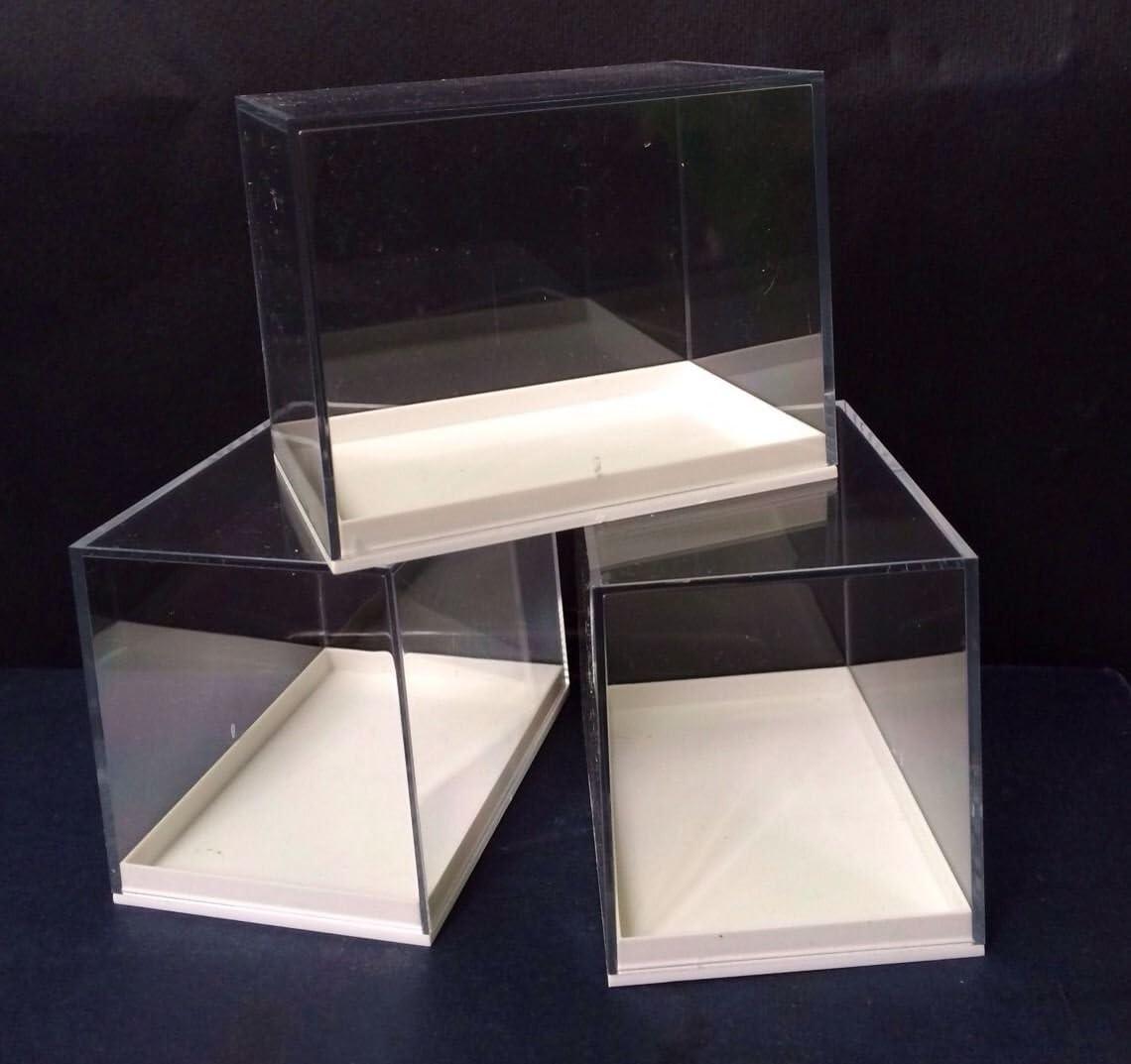 RED ROCK FOSSILS Caja de tamaño grande, metacrilato, 12 unidades ...