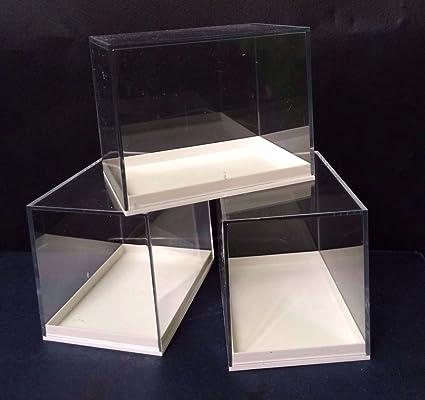 RED ROCK FOSSILS Caja de tamaño grande, metacrilato, 12 unidades, para los fósiles, meteoritos, moldes, monedas, etc: Amazon.es: Hogar