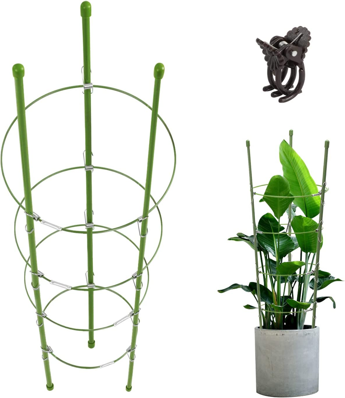 CEED4U 3 Packs 30 Inches Small Plant Support Cages Garden Support Rings with 12 Pcs Plant Clips, 4 Adjustable Rings, Plant Support for Orchids, Tomato, Climbing Plants Vegetables Flowers