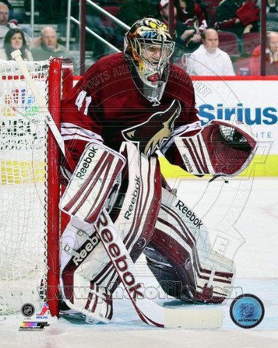- Mike Smith Phoenix Coyotes 2013 NHL Action Photo 8x10 #1