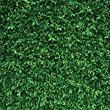 LYWYGG 10x10FT Green Leaves Photography Backdrops Spring Nature Backdrop Birthday Background for Birthday Party Seamless Photo Booth Prop Backdrop CP-87-1010