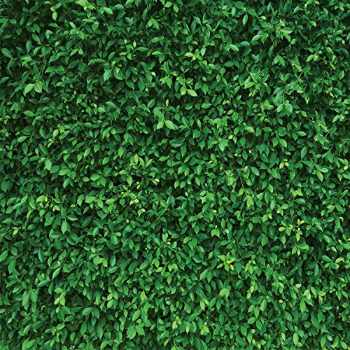 LYWYGG 10x10FT Green Leaves Photography Backdrops Spring Nature Backdrop Birthday Background for Birthday Party Seamless Photo Booth Prop Backdrop CP-87-1010]()