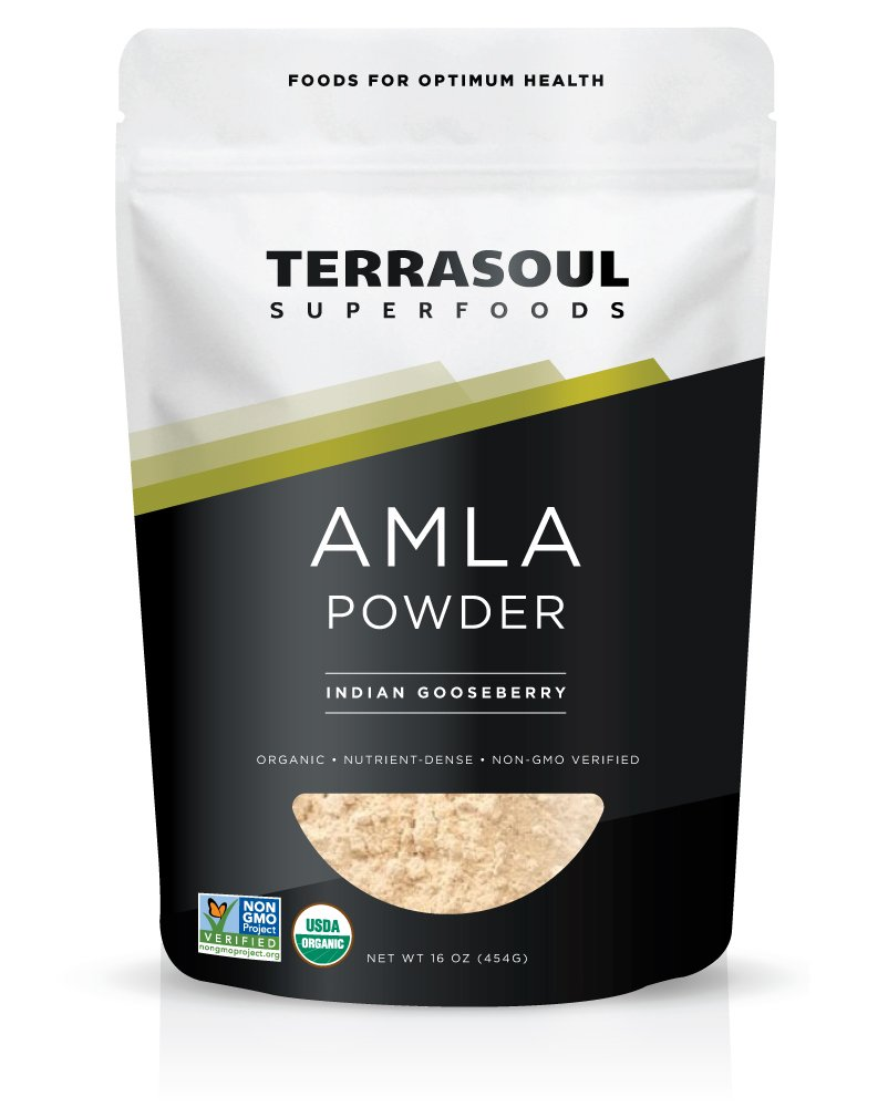 Terrasoul Superfoods Amla (Amalaki) Berry Powder (Organic), 1 Pound